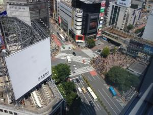 The famous Shibuya crossing, directly below us.